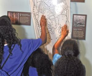 Interactive exhibit in the Visitor Center on the archaeological finds. Courtesy, National Park Service