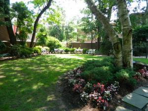 Garden, Louis Armstrong House Museum. Elis Shin, 2012