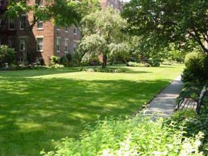 Hampton Garden, Courtesy of Daniel Karatzas, Jackson Heights Beautification Group